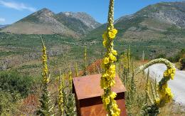 Peloponnes, Berge, Urlaub